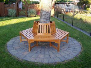 Скамейка вокруг дерева №2