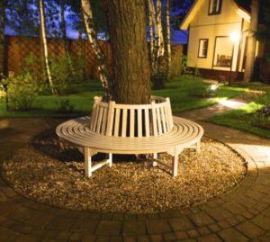 Скамейка вокруг дерева №4